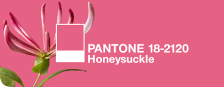 "Pantone's 2011 Color of the Year: ""Honeysuckle"""